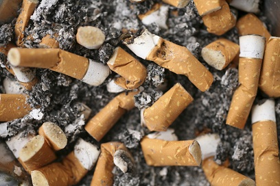 Cigarette butts- 11-18-11 (2)