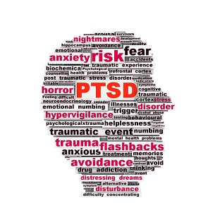 ptsd research paper outline Trauma/ptsd research papers will be presented to the class at the end of the semester by the student in 5 to 15 minute formats (and factors into the research paper grade) an outline or powerpoint presentation may be used reading directly from one's concept paper is not acceptable ○ you must complete a web-based.