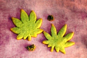 marijuana cookie 10-9-14