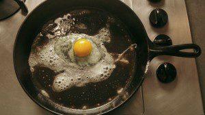 Fried Egg 2016