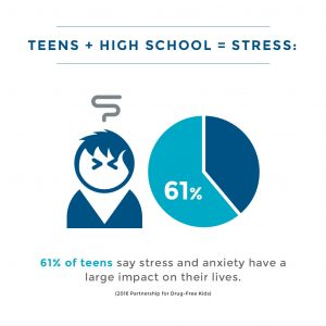 teens, high-school and stress